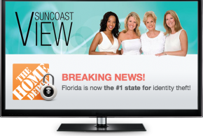 The WebDoc on ABC7 Suncoast's View